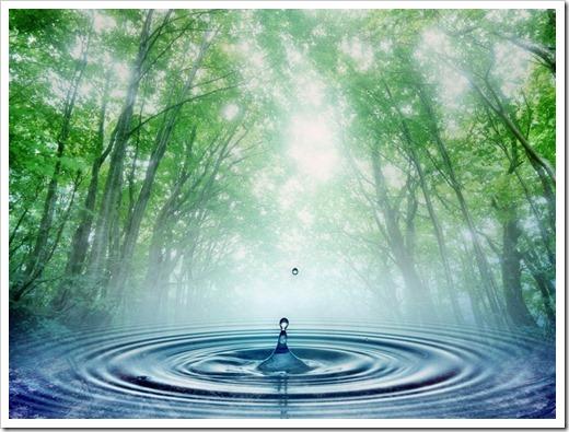 Стандарты качества воды
