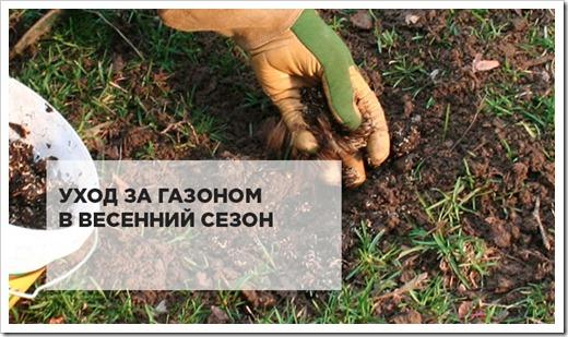 Весенний уход за газоном: как не допустить ошибок